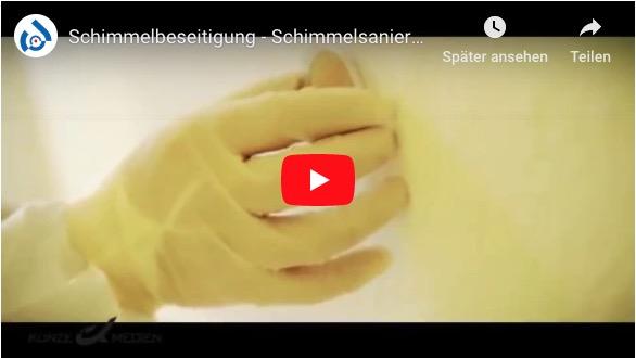 Schimmelsanierung München - Tronex GmbH